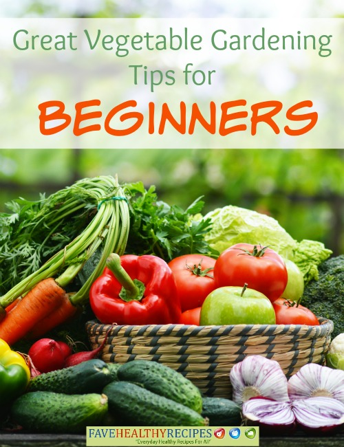 Great garden ideas and tips for beginners recipechatter for Great vegetable garden ideas