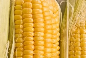 Slow Cooked Corn on the Cob
