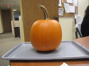 Purchased Baking Pumpkin