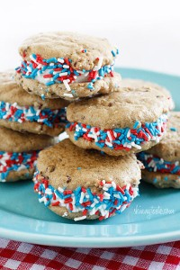 fro-yo-chocolate-chip-cookies