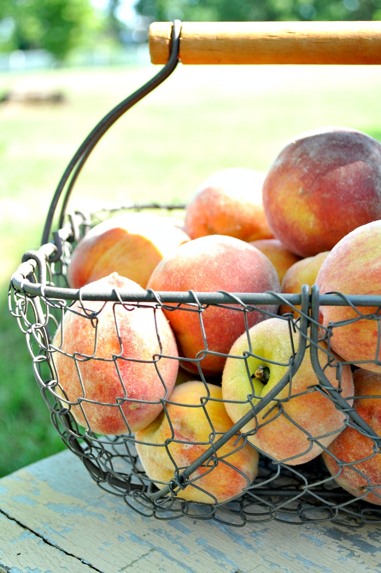 Basket of Peaches 3