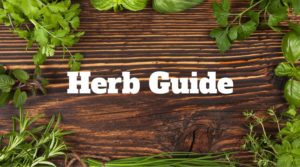 Herb Guide